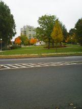 photo5584