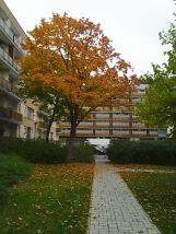 photo5648