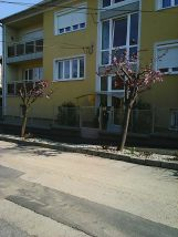 Photo7833