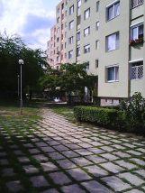 Photo9075