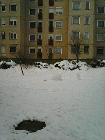 Photo10035