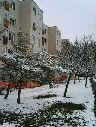 Photo10175